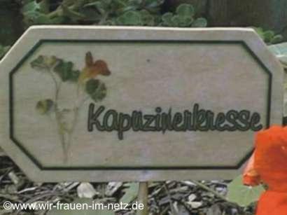 Blumenstecker Kapuzinerkresse