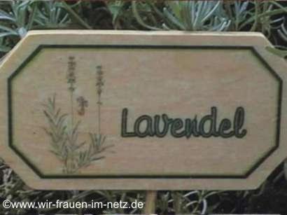 Blumenstecker Lavendel