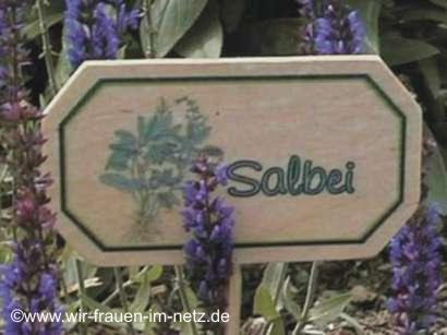 Blumenstecker Salbei
