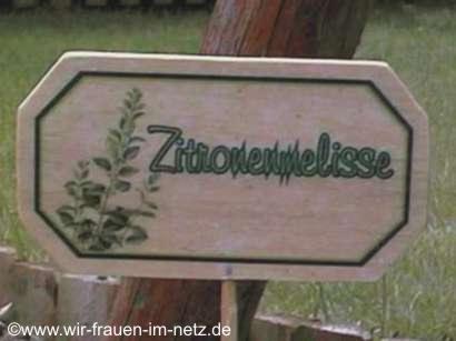 Blumenstecker Zironenmelisse